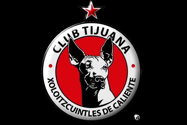 Xoloitzcuintles of Tijuana